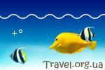 Информер температуры воды Волги в Самаре